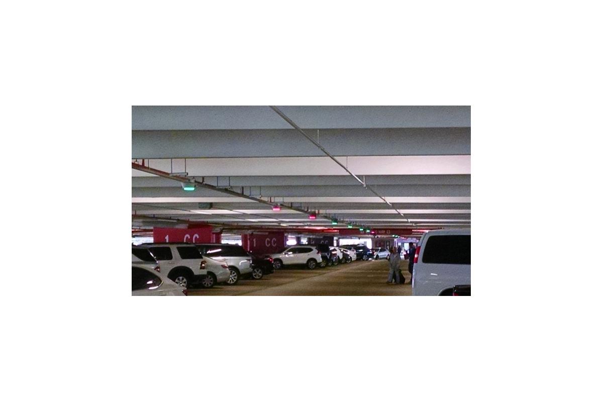 Fort Lauderdale Hollywood International Airport Hibiscus